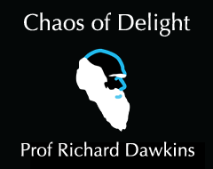 Chaos of Delight Episode 4