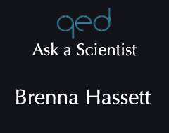 QED Ask a Scientist – Brenna Hassett