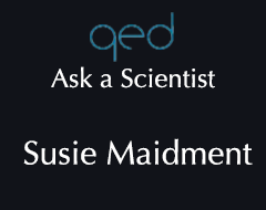 QED Ask a Scientist – Susie Maidment