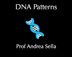 DNA Patterns